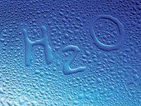 Вода – основа всего живого. Пьем ее правильно