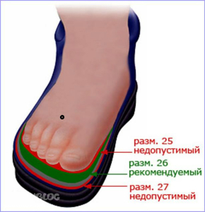 Выбираем оптимальную обувь с заботой о ногах и позвоночнике