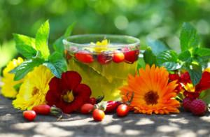 Травяные чаи: выбираем самые полезные